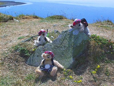 The giant rock attacked the little bear - to the horror of the other two.